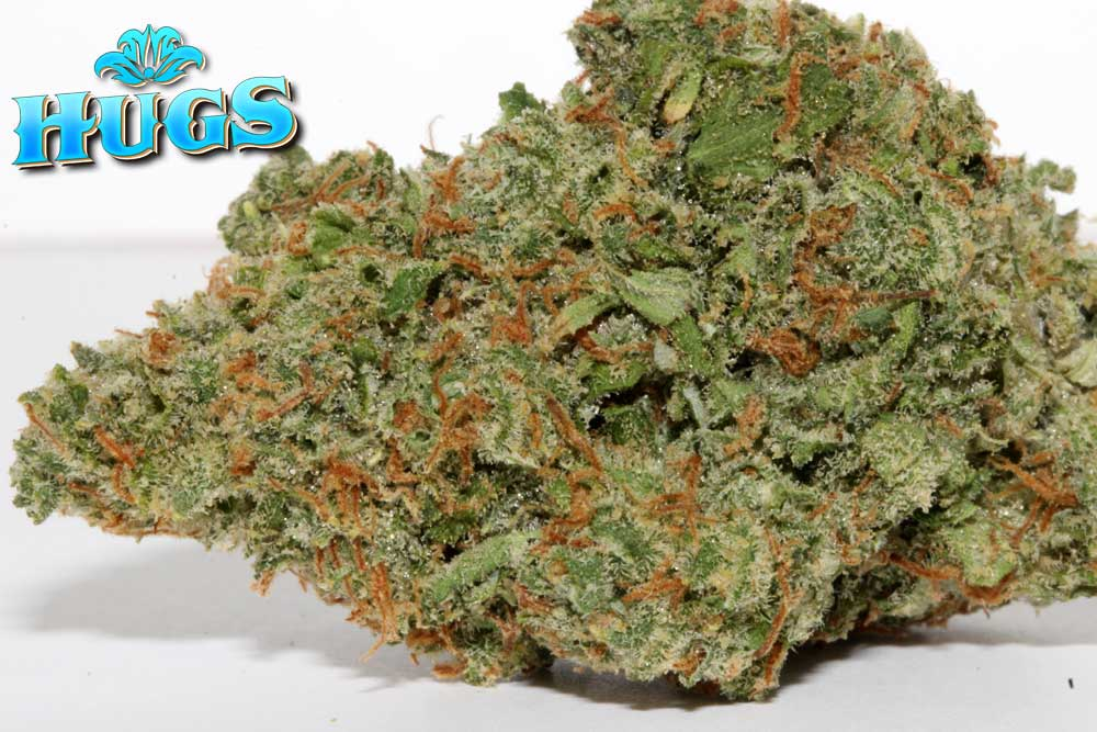 Sacramento medical marijuana Dispensary Strain JACK HERER