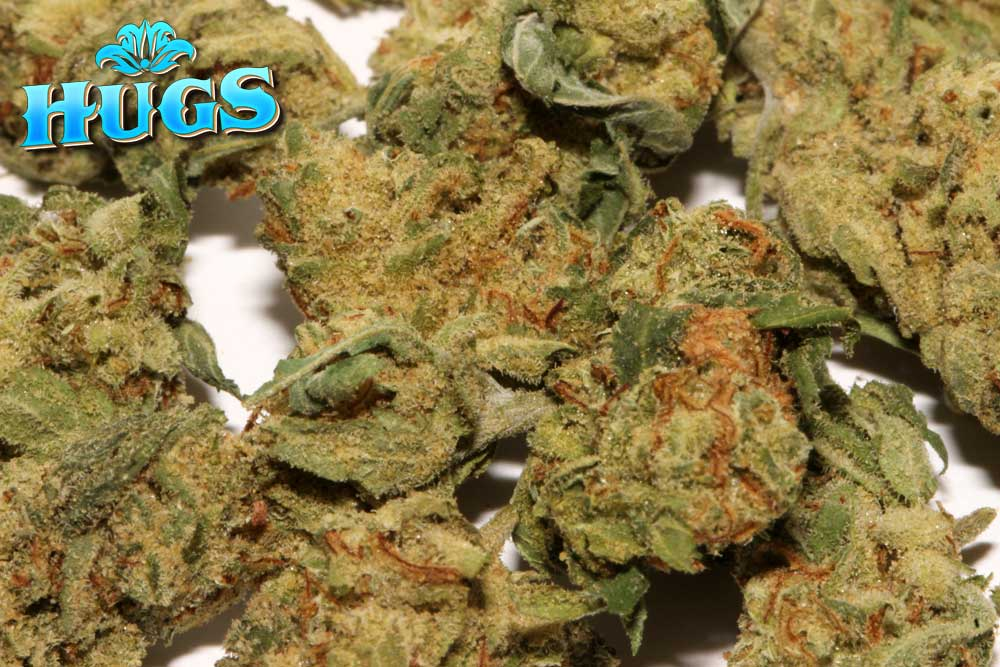 Sacramento medical marijuana Dispensary Strain RED DRAGON SMALLS